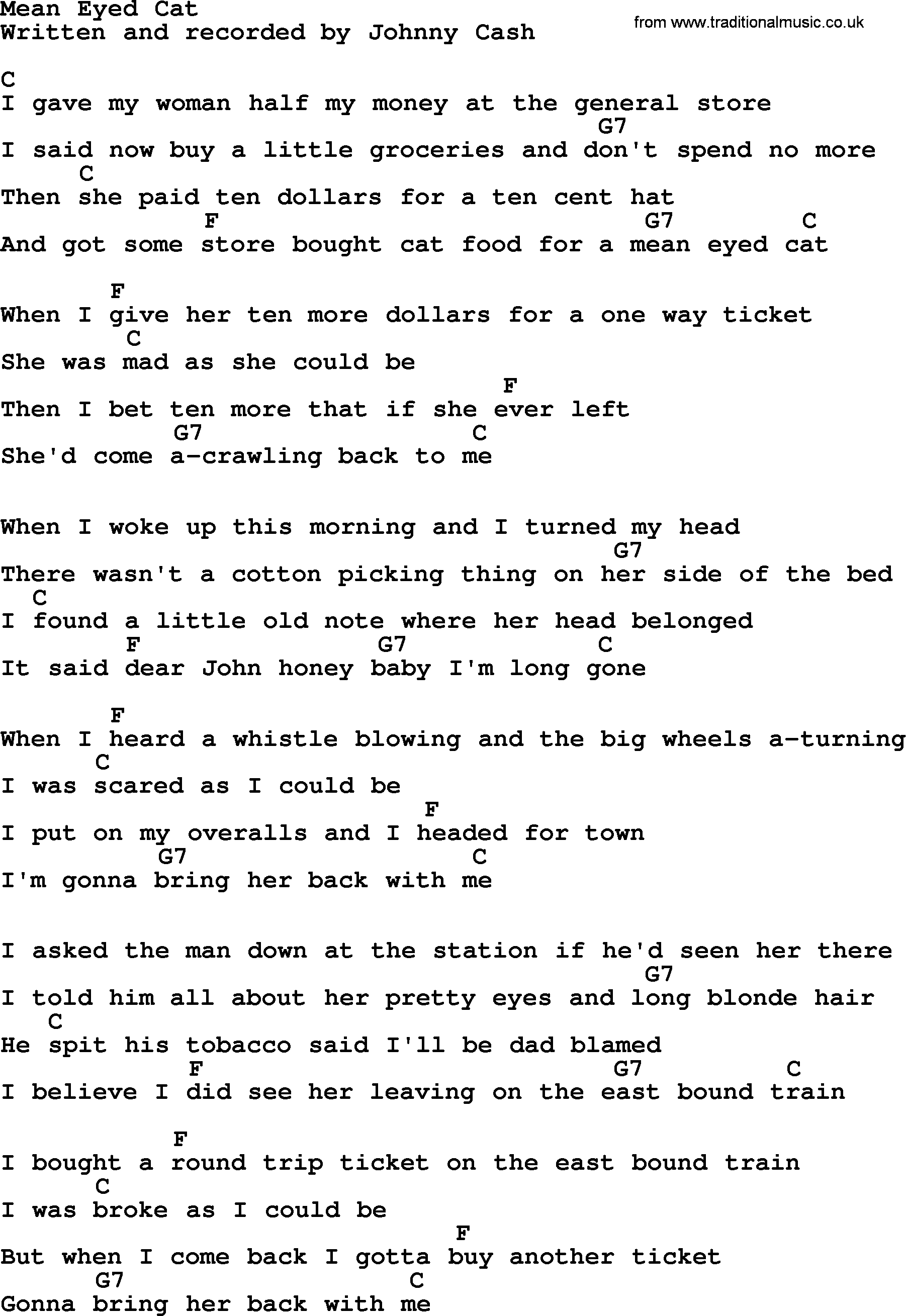Mean Eyed Cat Lyrics