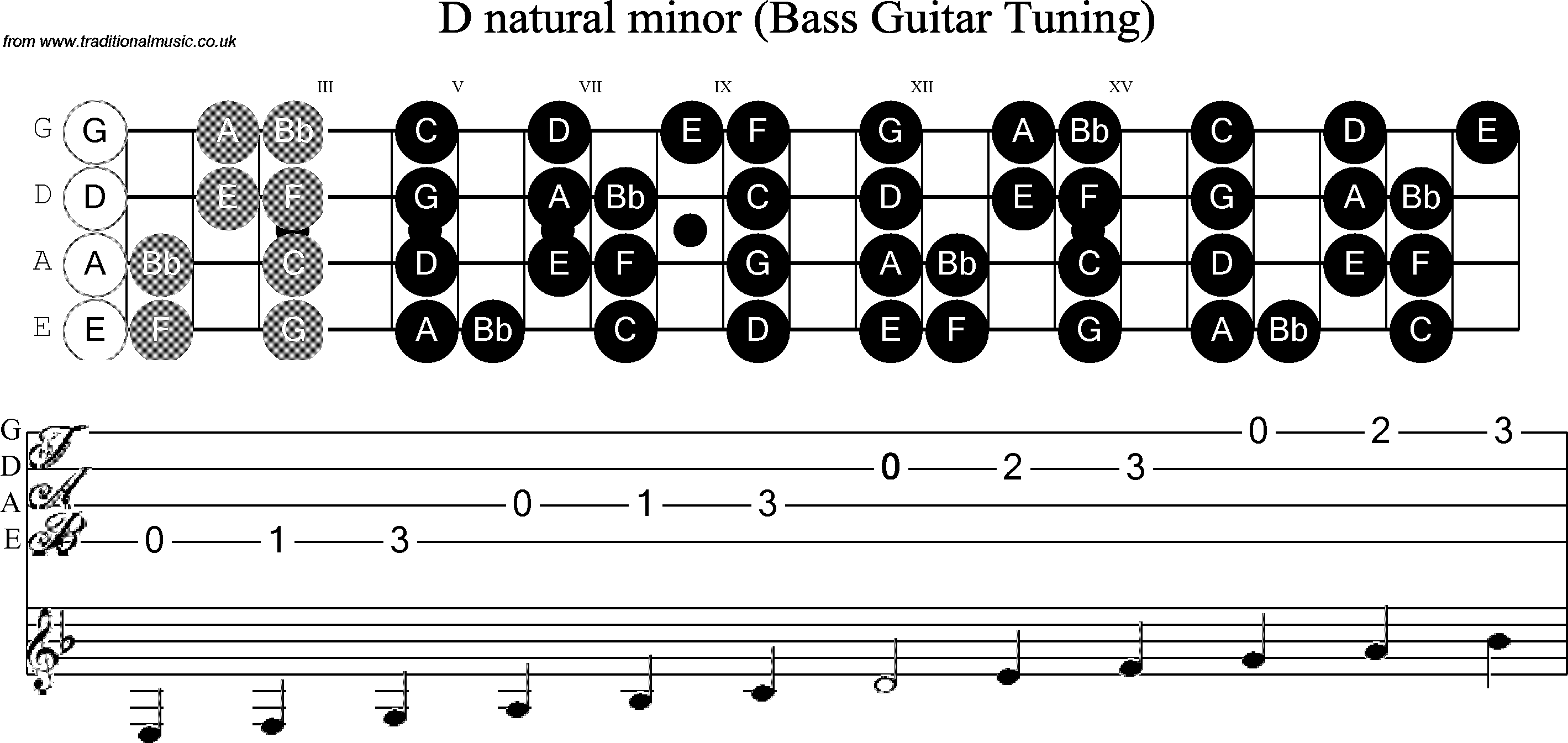 Bass Guitar Neck Diagram Library Of Wiring Diagram