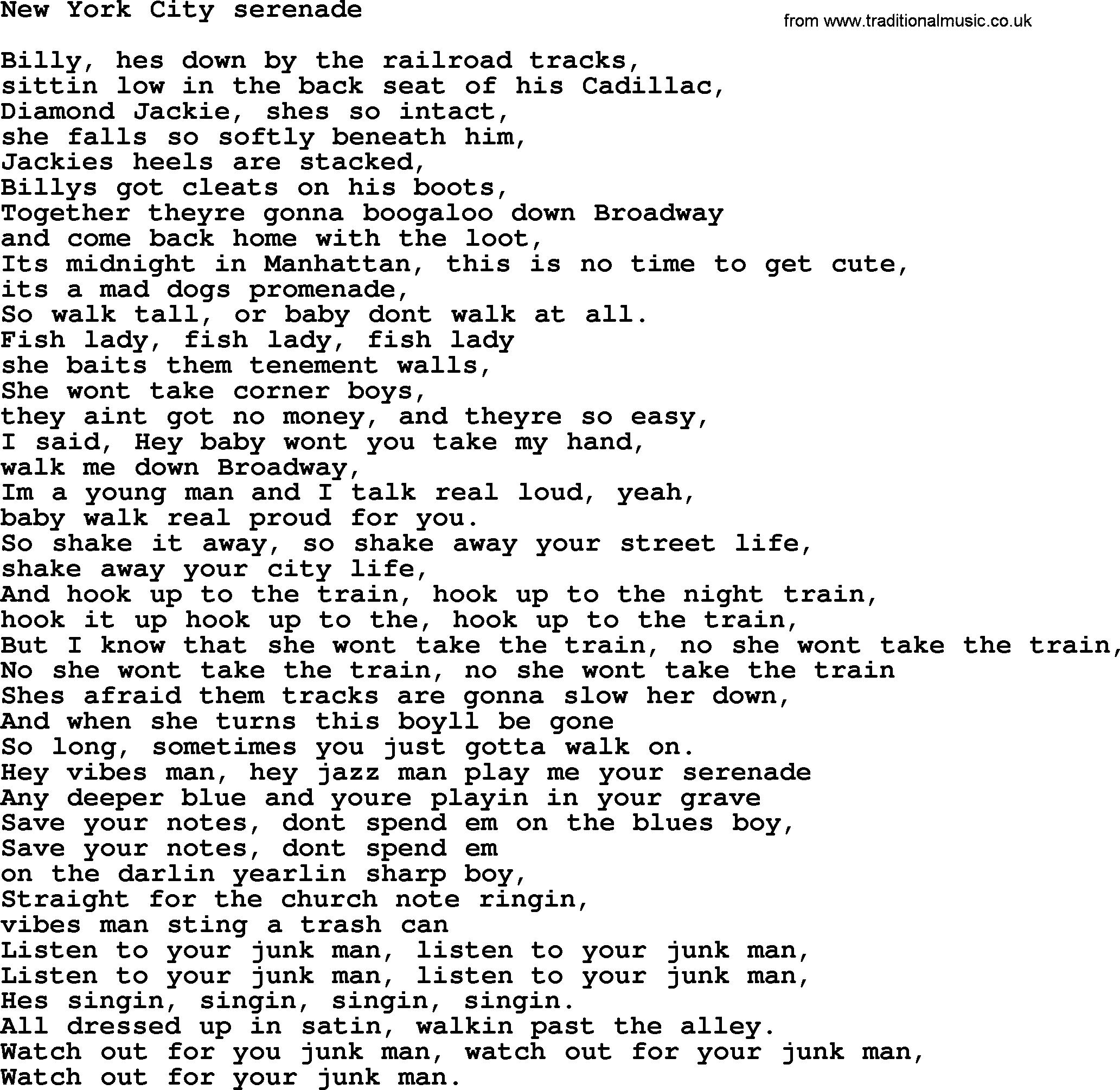bruce springsteen song new york city serenade lyrics